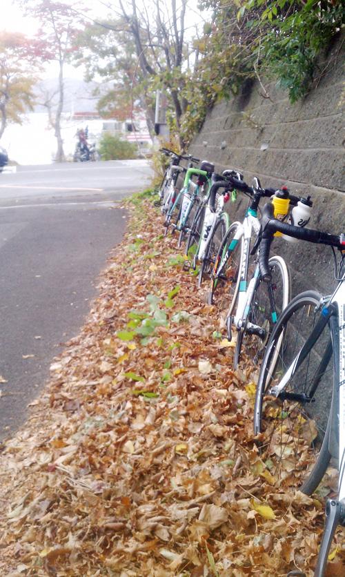 十和田湖ヒルクライム奥入瀬渓流マイカー交通規制ライド