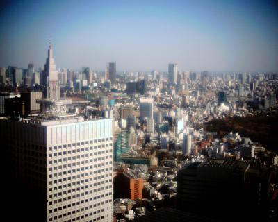 東京タワーと神宮の杜:Entry