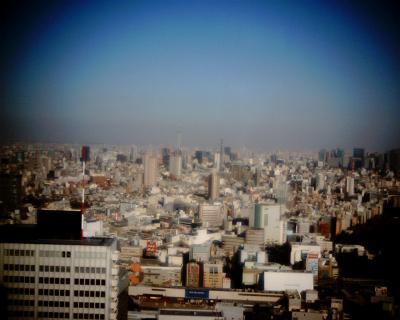 都庁から東京スカイツリー:Entry