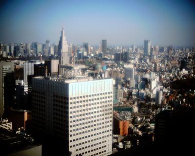 しっかりと東京タワー:Entry