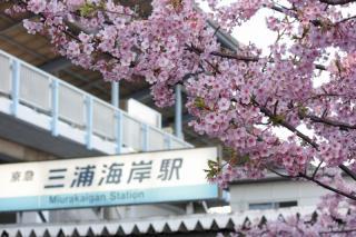 110304_KQ-Miurakaigan-sta.jpg