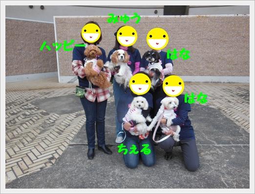 DSCN6820c.jpg