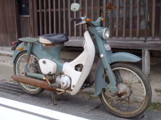 緑カブ20120902 (2)