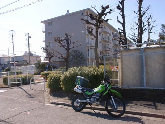 R0030668.jpg