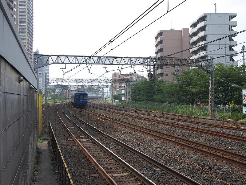 P1020086.jpg