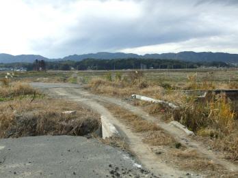 gotoubuchi6.jpg