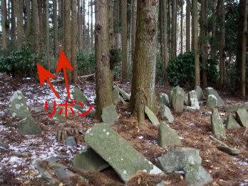 haseyama4.jpg