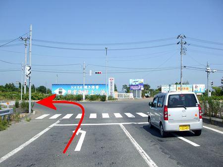 kamiakai1.jpg