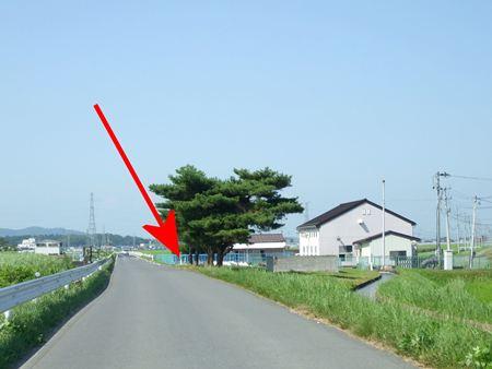 kamiakai5.jpg