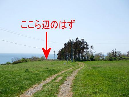 kurosaki4.jpg
