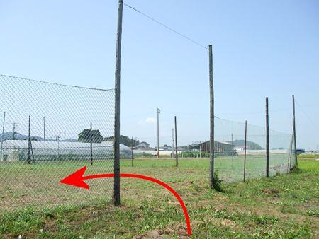 takasuka6.jpg