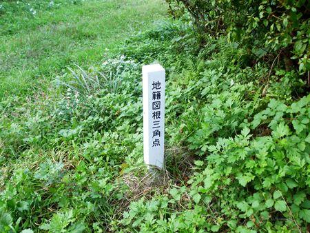 tokusenjou-zukon2.jpg
