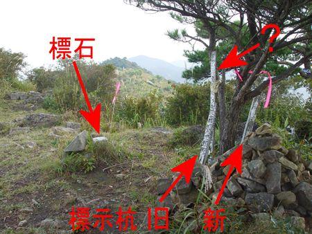 tsudani8.jpg