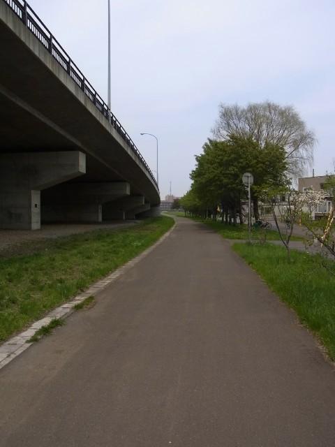 ロイズ 公園04
