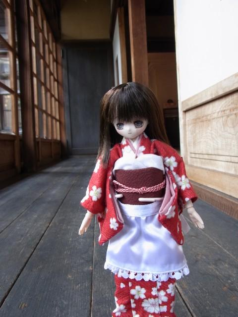 れんげ 5