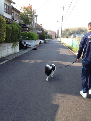 fc2blog_20120418143333422.jpg