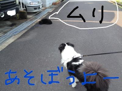 fc2blog_20120418145658ad6.jpg