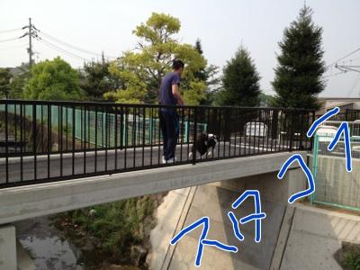 fc2blog_20120508152656c93.jpg