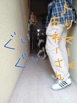 fc2blog_20120619120540e82.jpg
