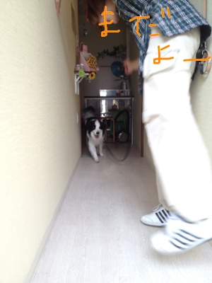 fc2blog_20120619120926083.jpg