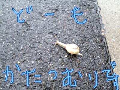 fc2blog_2012062114065914c.jpg
