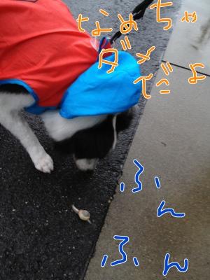 fc2blog_20120621141521a2b.jpg