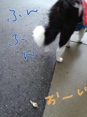 fc2blog_201206211418341b3.jpg