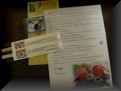006_convert_20110210110858.jpg
