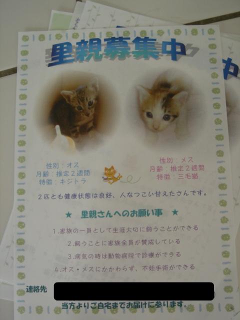 04satooya.jpg
