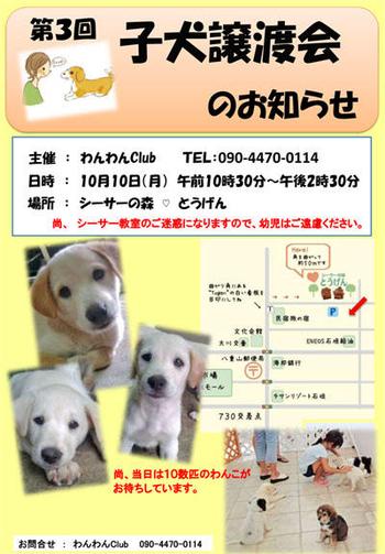 131796546779913113018_jyoutokaipop3.jpg
