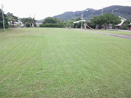 草刈り後の芝生