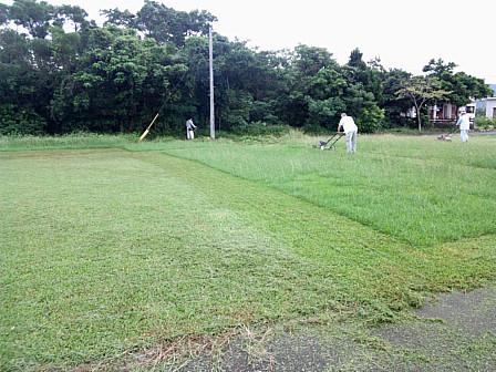 刈取前と後の芝