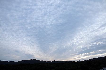 1月30日朝ウロコ雲