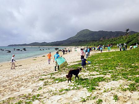 BC伊-浜犬