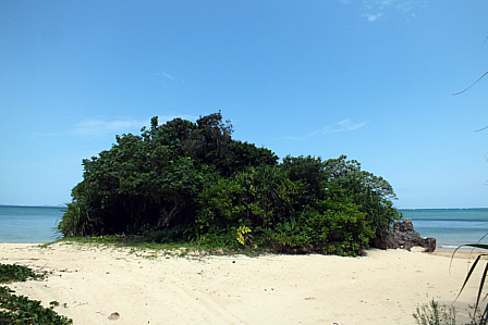 浜の小島?
