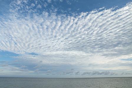 7月10日7時22分ウロコ雲