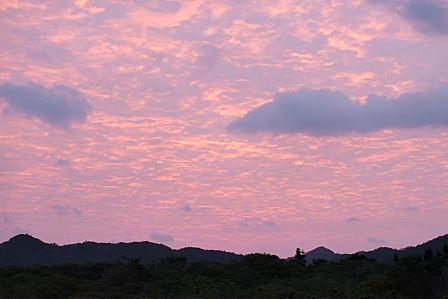 11月8日6時57分ピンクの朝焼け