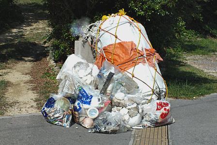 11月15日浜のゴミ回収