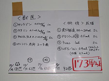 IMG_4482.jpg