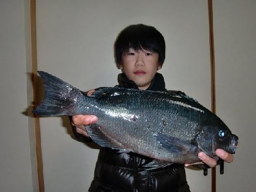 少年釣師君
