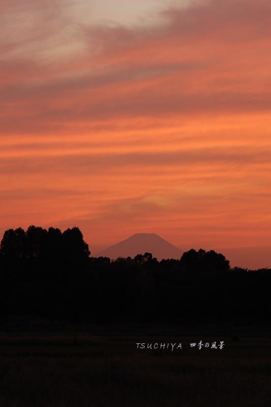 秋ヶ瀬から見る富士山