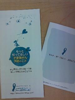 リーフレット&小冊子