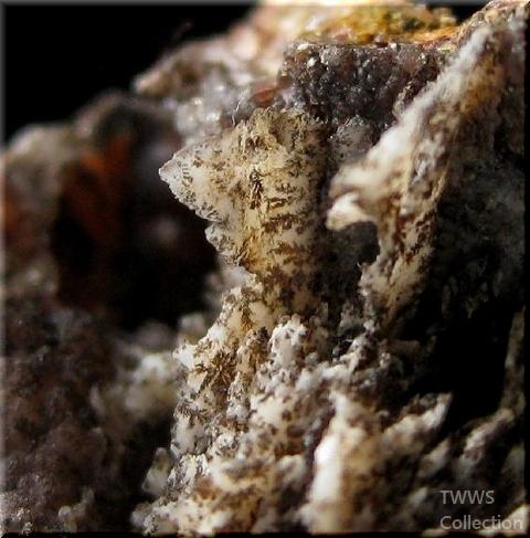 晶洞_モロッコ2樹形石