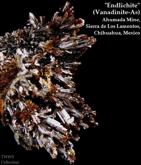 含砒バナジン鉛鉱_メキシコ2
