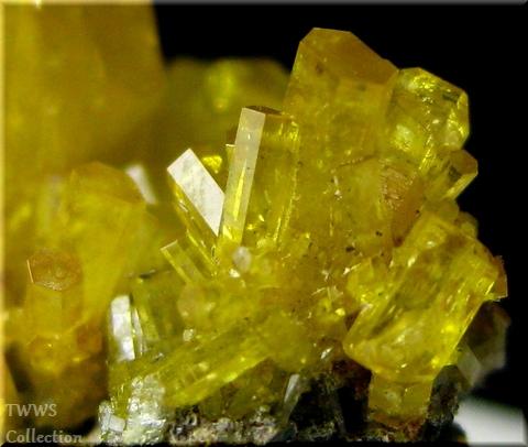 ミメット鉱_中国2アップ6