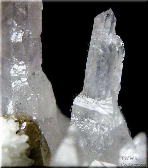 松茸水晶_イタリア1アップ11