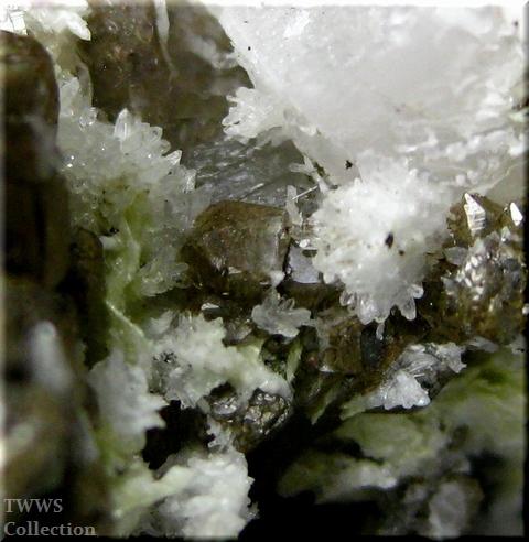 松茸水晶_イタリア1アップ8