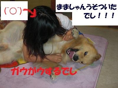 CIMG4885.jpg