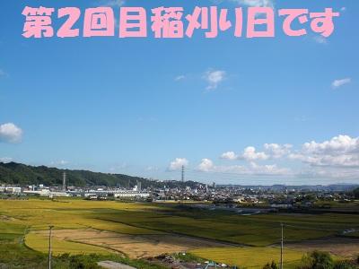 CIMG5609.jpg