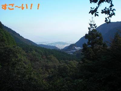 CIMG6174.jpg